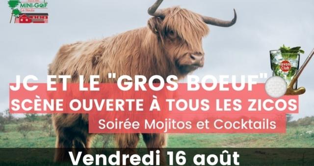 """Baie de la baule Culture, Concert - JC et le """"Gros bœuf"""""""