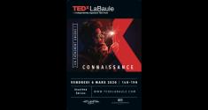 Actu 2eme TED X la Baule